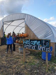 Welcome-to-arnprior-pumpkins