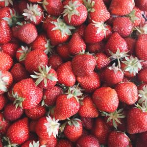 strawberry-sustainable-food-lockdown