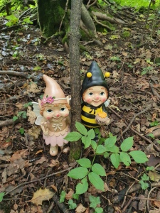 gnome-trail-fairy-bee-gnomes