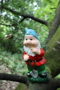 bonhill-gnome-trail-craigy-in-tree