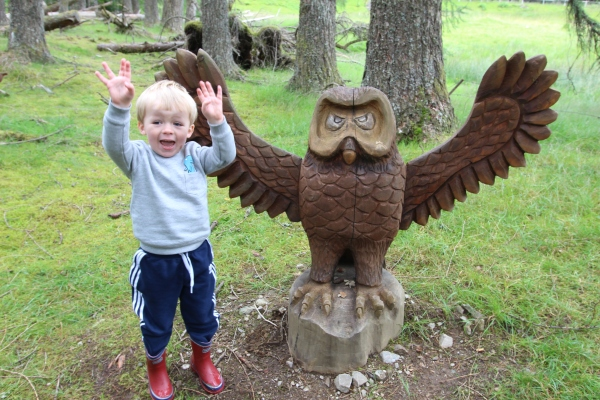 tyndrum-grufallo-trail-hoolet-owl-travis