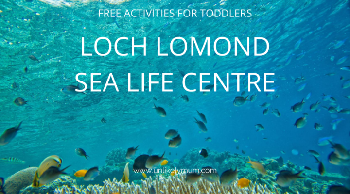 Loch Lomond Sea LifeCentre